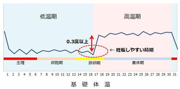妊娠しやすい日の基礎体温グラフ