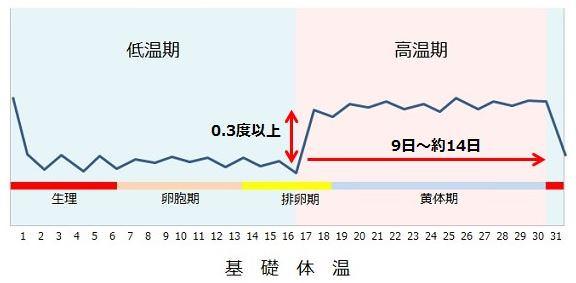 排卵日の基礎体温グラフ